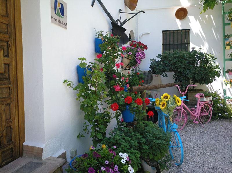 Rincón de Carmen, Rute
