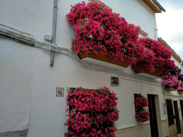 Balcón calle Toledano, Cabra