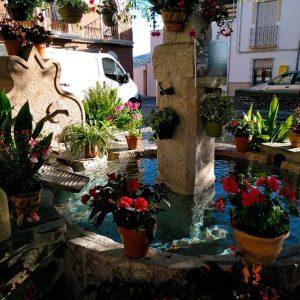 Rincón Plaza Nuestra Señora de Gracia