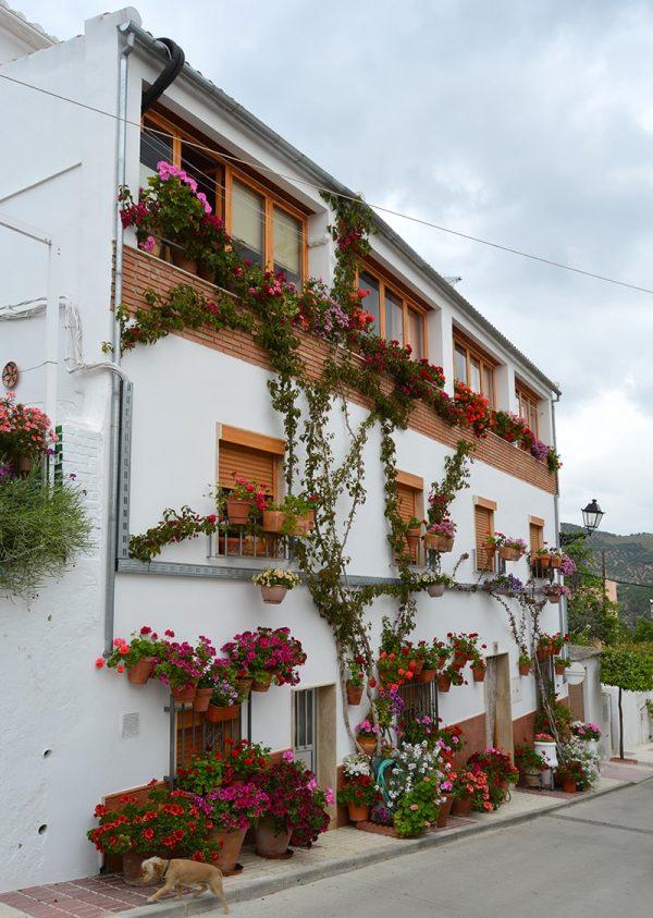 Balcón Fuente Nueva, Iznájar